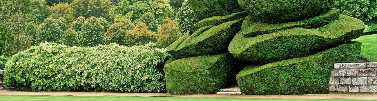 Floravenir formations formations entretien des espaces for Entretien espace vert mulhouse